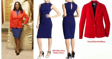 House of Lords Red and Blue Outfit